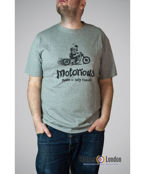 T-Shirt DICKIES WHEATLAND szary